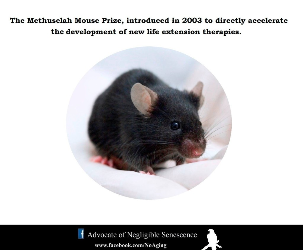ANS_Methuselah_Mouse_Prize