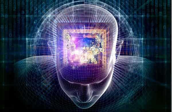 brain.chip_.grids_